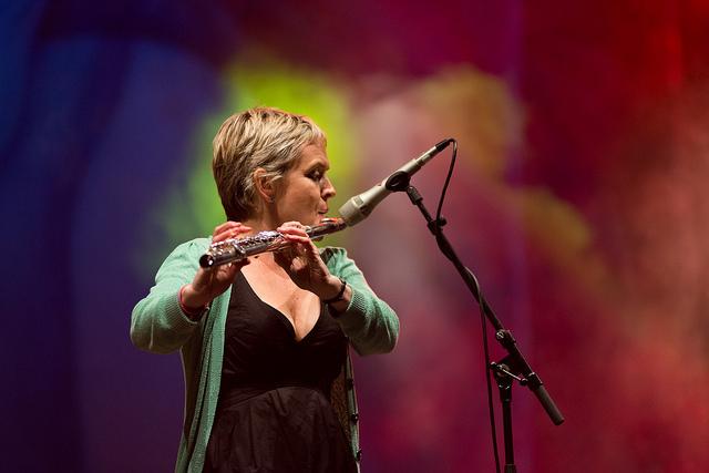 Flook - Sarah Allen