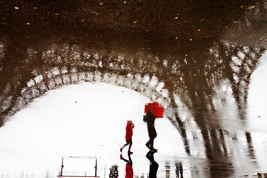 Le petit chaperon rouge - Christophe Jacrot