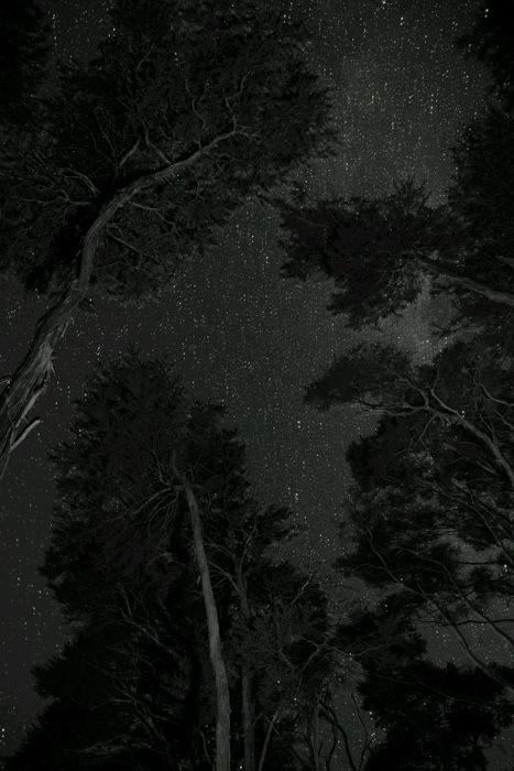 20140402-005844.jpg
