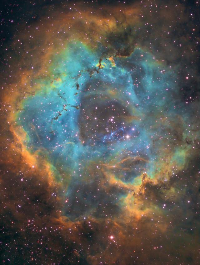 NGC 2244, la nébuleuse de la Rosette