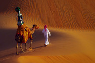 google-camel-view-1