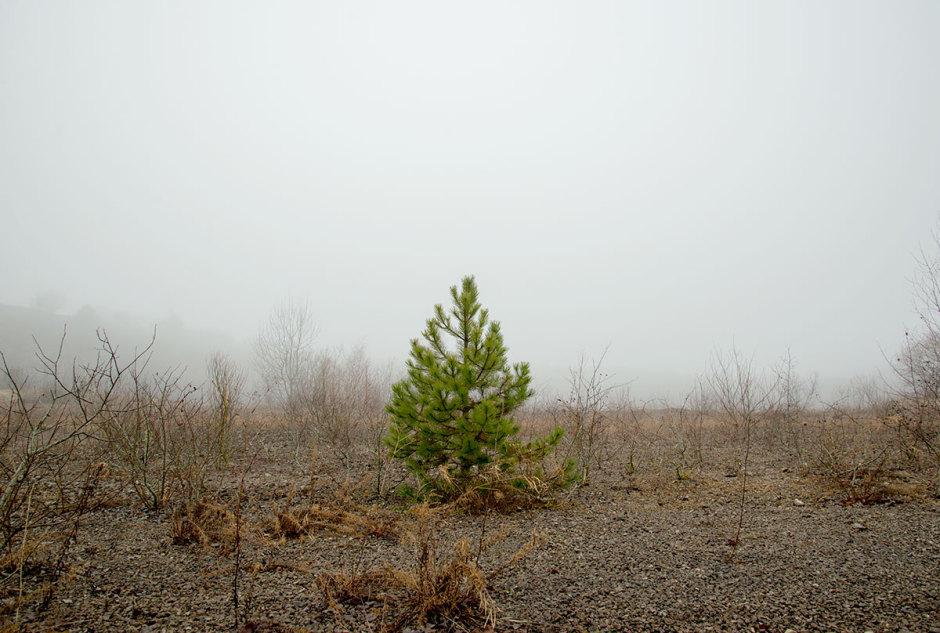 Par Julien, Nikon D600, 24-85mm