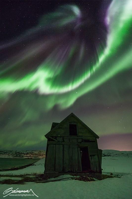 © Ole Salomonsen