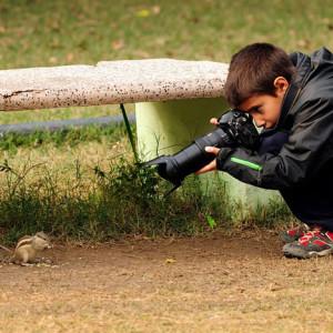wildlife-photography-carlos-perez-naval-1