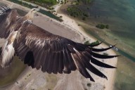 "© Capungaero / < a href=""http://www.dronestagr.am/bali-barat-national-park-indonesia/"">Dronestagram"