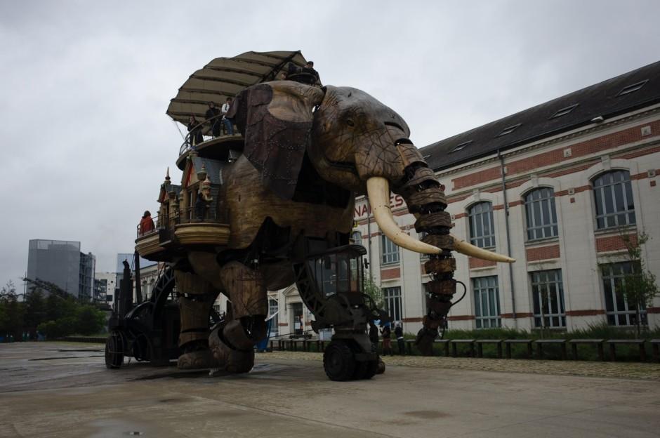 Cet éléphant manque de pêche...