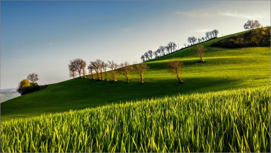 © Luigi Ales - photo prise avec un Lumia 1020