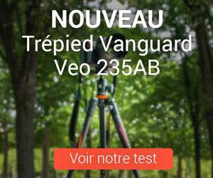 Vanguard 300 test