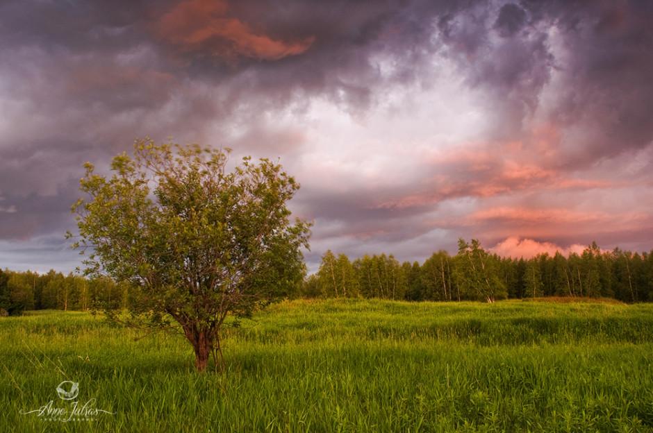 À la chasse du mauvais temps | Orage 2