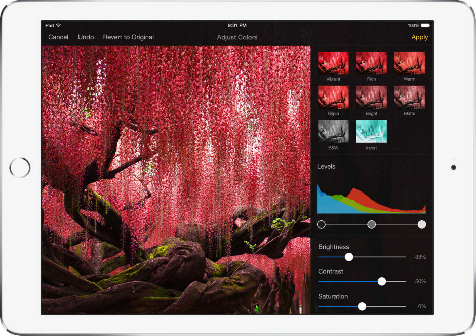 Pixelmator iOS-2