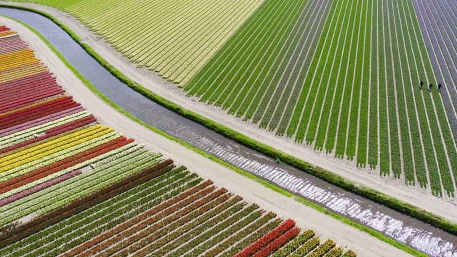 3ème prix - catégorie Places - © Anders@andersa.com