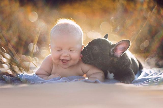 Ivette-Ivens-Bulldog-Baby_1