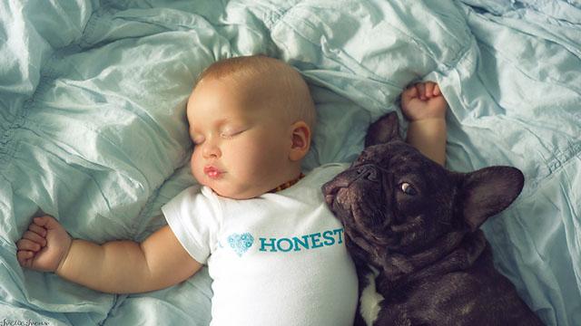 Ivette-Ivens-Bulldog-Baby_2