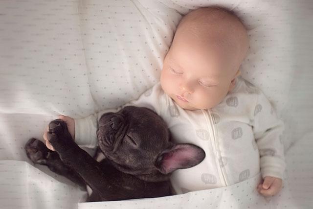 Ivette-Ivens-Bulldog-Baby_8