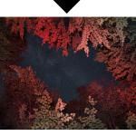 Capture d'écran 2015-09-02 à 09.15.33