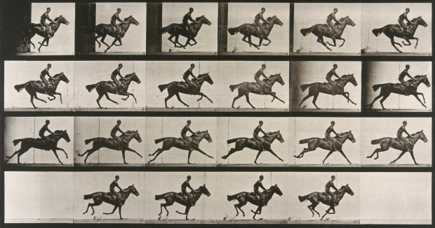 Muybridge, galop, 1887