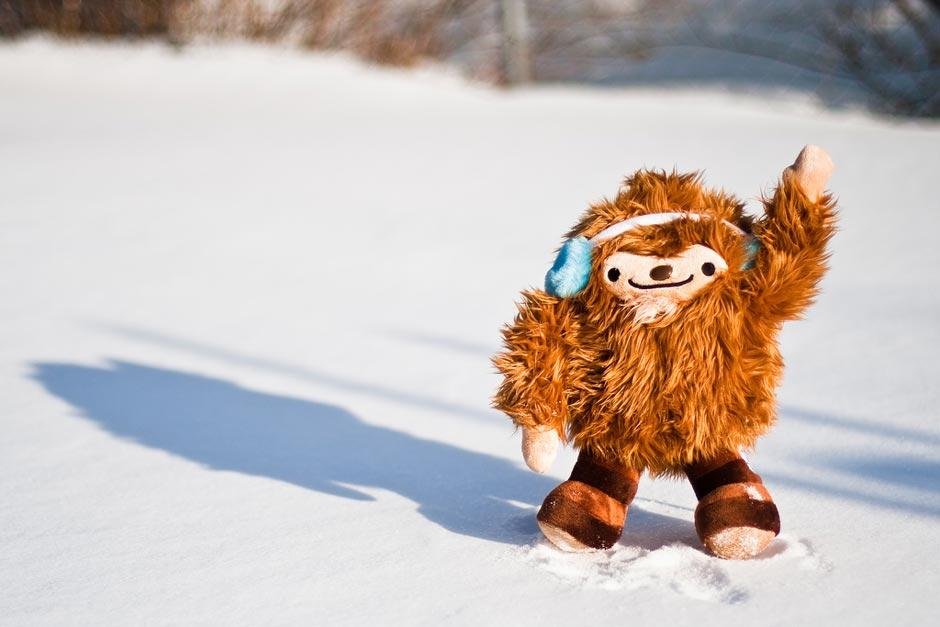 MP #155 : comment vous protéger du froid et continuer à prendre des photos cet hiver