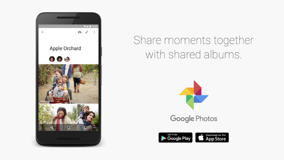 Albums Partagés Google Photos