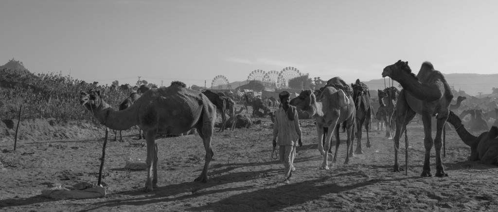 Fuji-X1OOT-Test-Travel-Photography-Inde-Rajasthan-Genaro-Bardy-14-1024x436