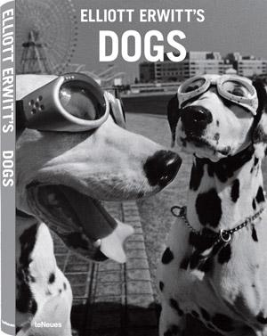 livre-dogs-erwitt