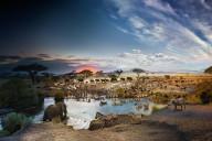phototrend stephen wilkes 2200 photos 26h montage day to night savane tanzanie