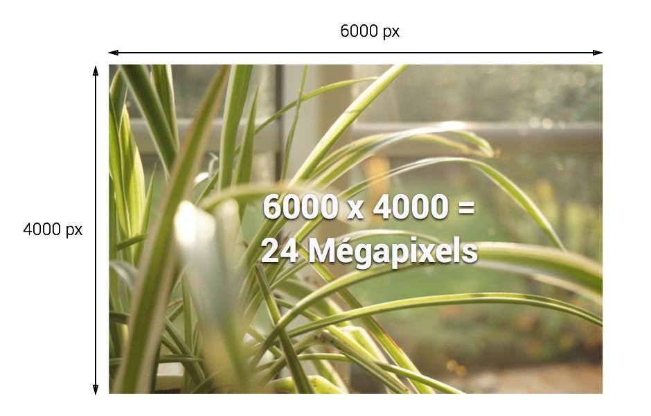 Mp 160 pixels d finition et r solution d image - Definition d une hauteur ...