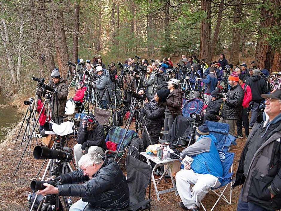 © Yosemite Photography Workshops