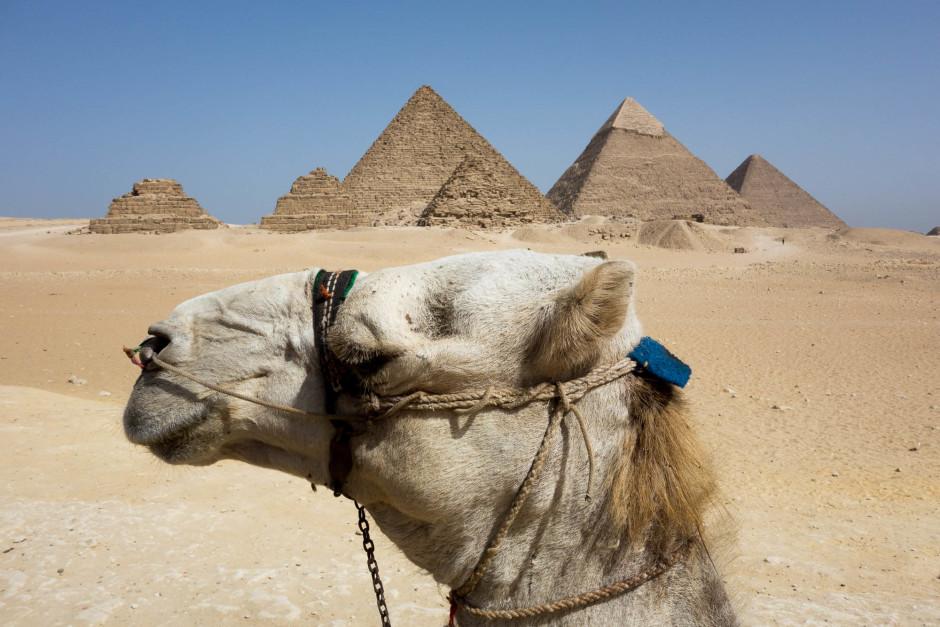 Les Pyramides de Gizeh - © Damien Roué