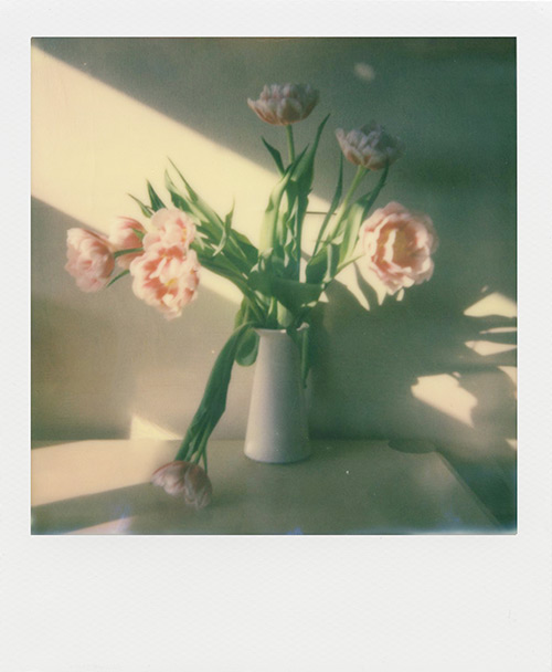 Impossible Project I-1_8
