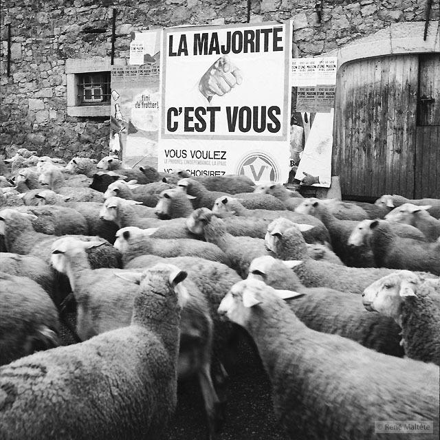 © René Maltête