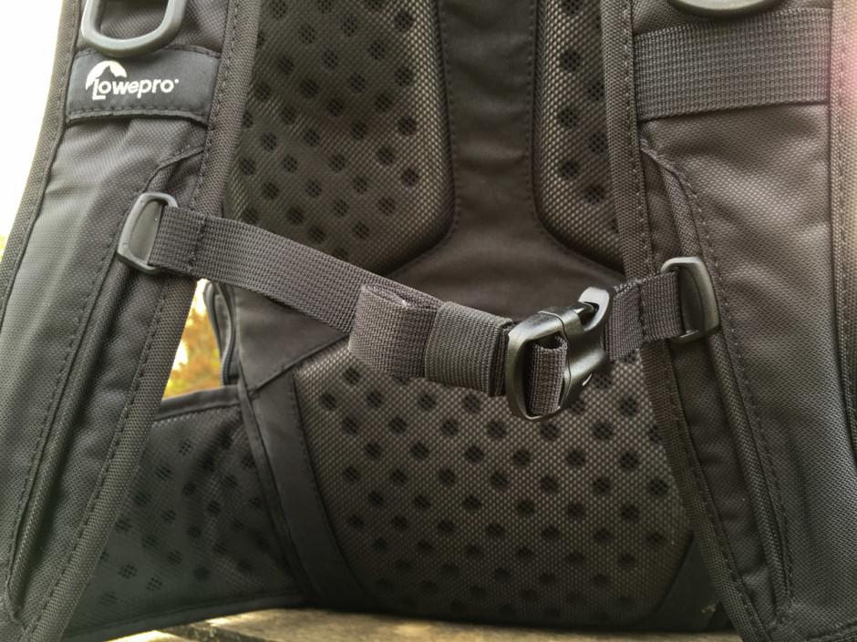 La ceinture de poitrine, réglable en longueur et position