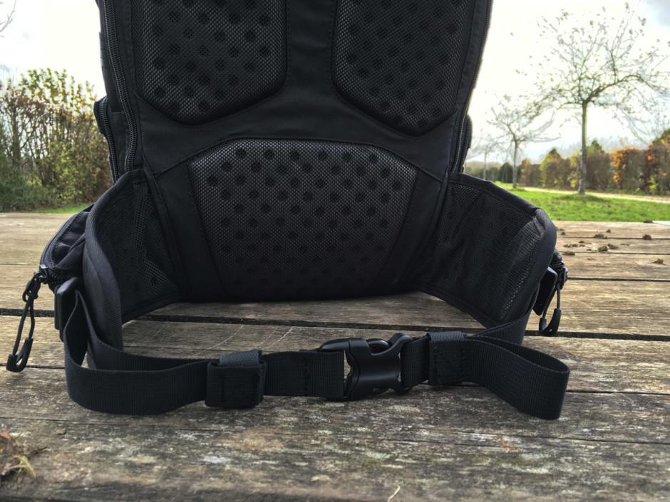 La ceinture ventrale