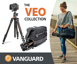 Vanguard VEO Banner juin