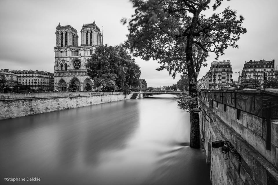 Stephane-Delckie-Paris-sous-les-eaux-3