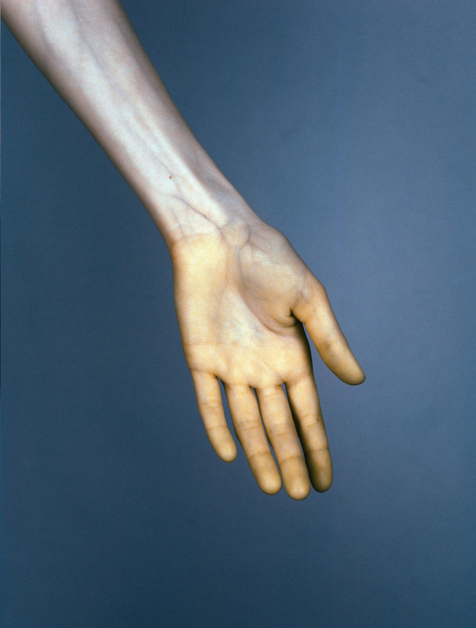 Edward Thompson, Hand #6 from The Vein, 2015. 120mm CIR Photograph. © Edward Thompson/Schilt Publishing & Gallery.