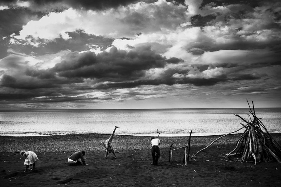 ©Free range four, Niki Boon