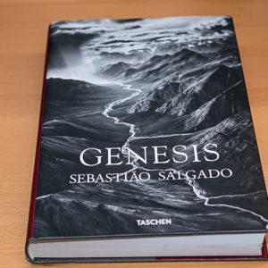 Genesis-1