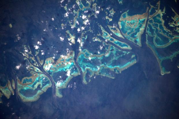 """© Thomas Pesquet, ESA/NASA - """"Zoom sur la Grande Barrière de Corail et sa vie sous-marine foisonnante... mais menacée"""""""