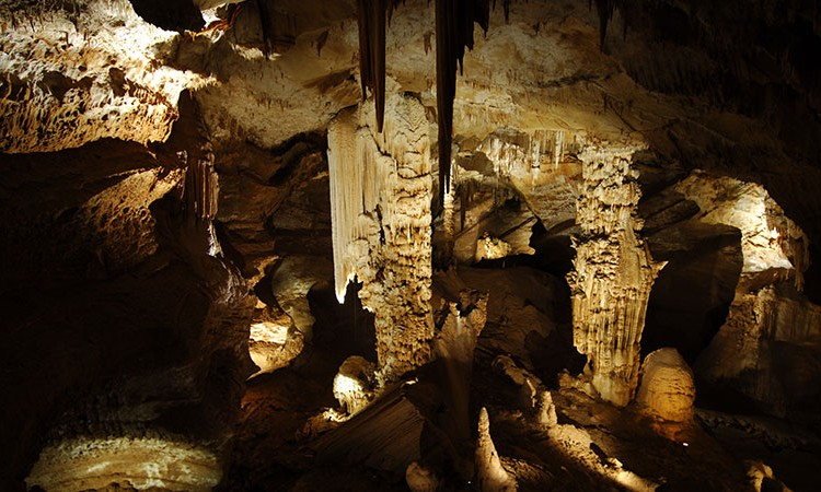 © L'Aven d'Orgnac - Grotte et cité préhistorique