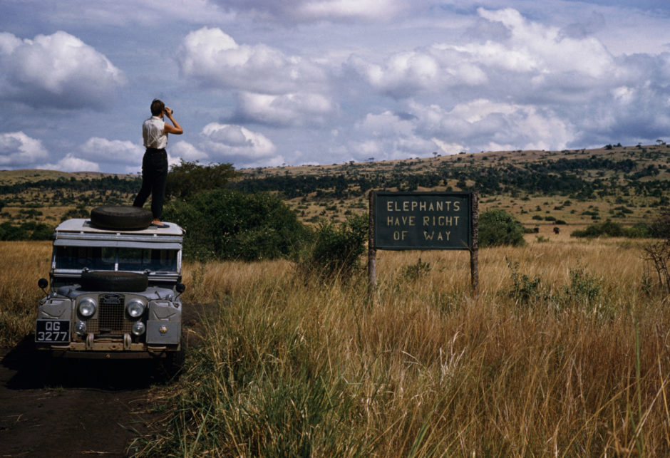 "David Rodgers - Magnum Photos - ""Uganda, Queen Elizibeth National Park - 'Elephants have Right Of Way' sign on crater lake track in the Queen Elizibeth National Park, 1958"
