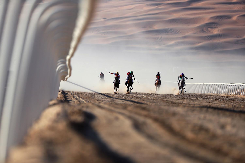 © Karim Sahib - AFP PHOTO - Le desk photo de Nicosie reçoit aussi beaucoup de photos d'événements sportifs (golf, cricket, polo, course de chevaux, etc) - Cette photo a été prise durant le festival Liwa Moreeb Dune 2017 et représente une course de chevaux pur sang arabes dans le désert de Liwa en janvier 2017