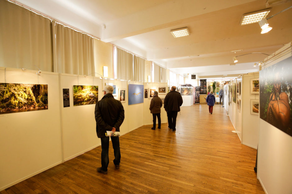 EXPOSITION PHOTO ©Com des Images