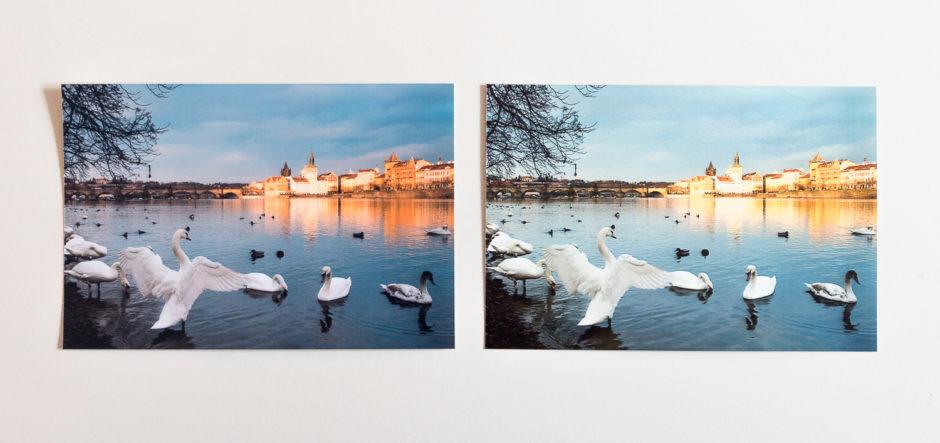 La photo imprimée oar la Canon Selphy CP1200, à gauche, respecte mieux les couleurs originales mais paraît plus sombre que la photo de la Kodak Dock, à droite.