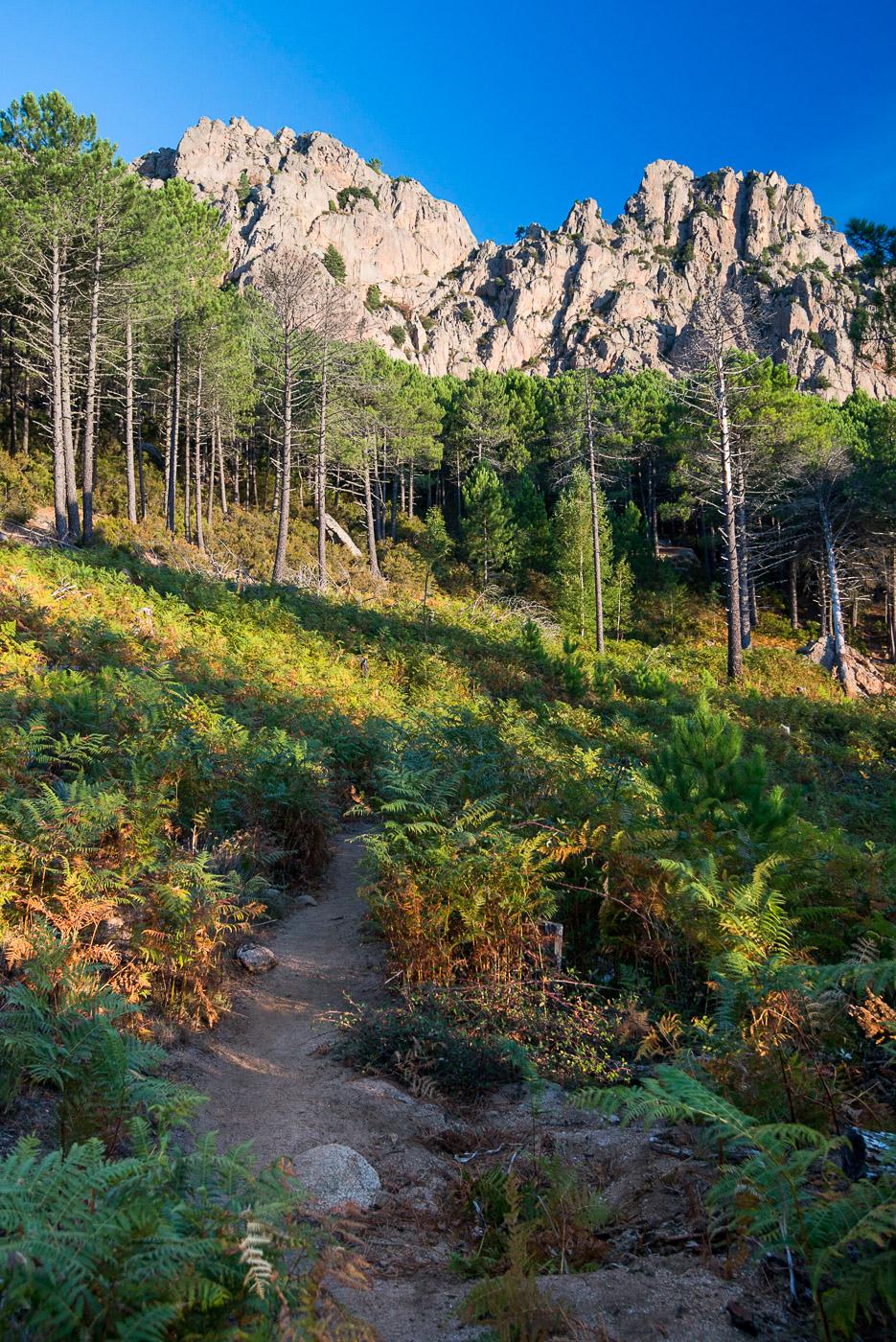 Sentier de randonnée - © Damien Roué