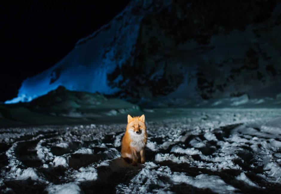 """© Corey Arnold - """"Aleutian Dreams"""""""