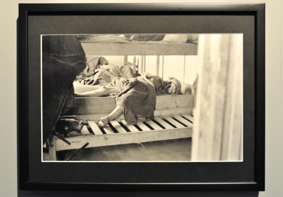 """© Germaine Kanova -Exposition """"Photographes de guerre - Depuis 160 ans, que cherchent-ils ?"""" - Mémorial de Verdun"""