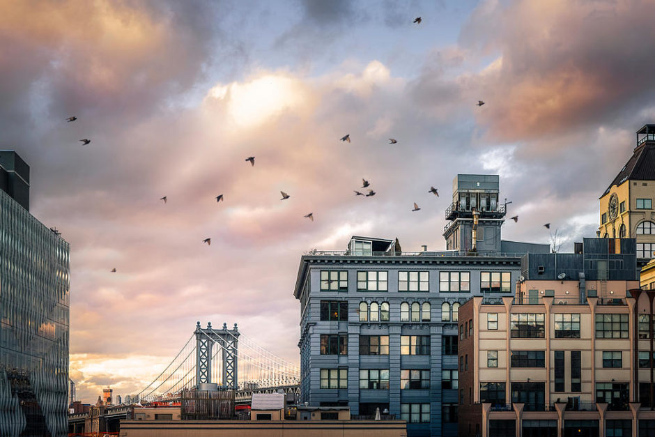 """© Olivier Reynes - """"Manhattan"""""""