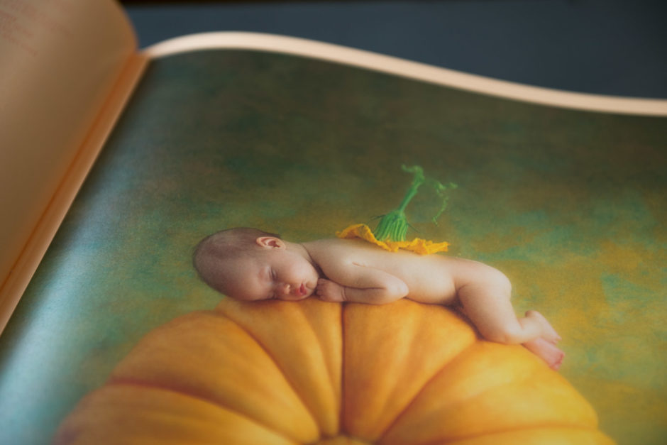 Phototrend-Anne-Geddes-livre-Small-World_11