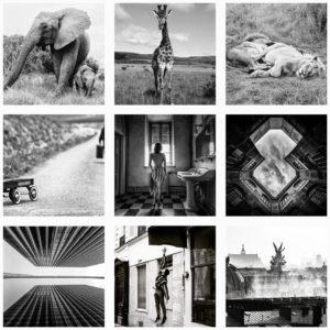 Zeinberg-Awards-noir-et-blanc