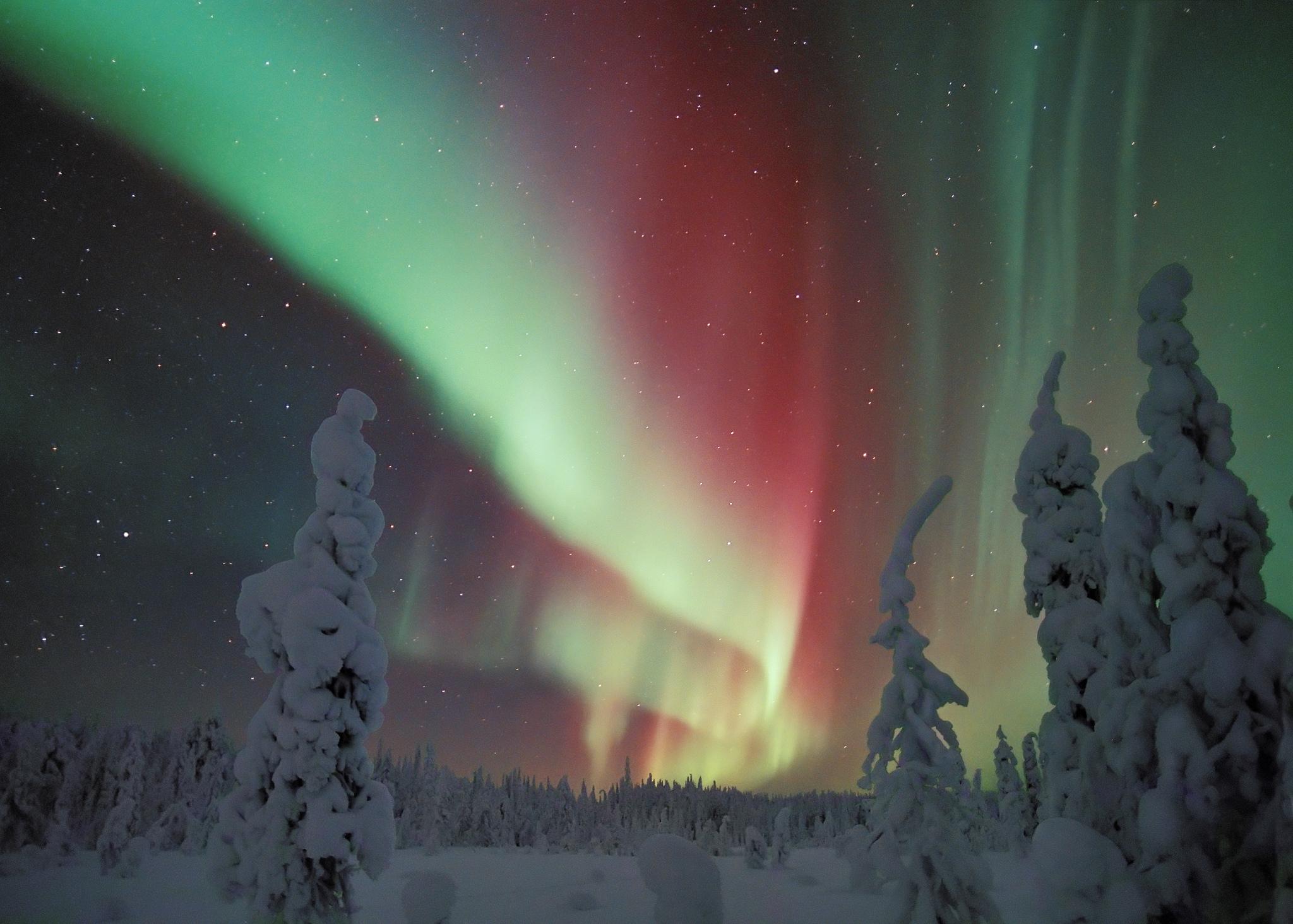 """Résultat de recherche d'images pour """"les aurores boreales"""""""